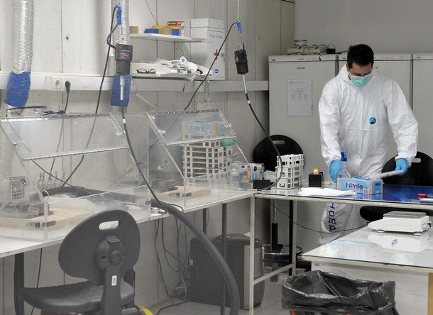 Bosnian laboratory technician works in l