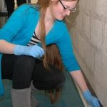 Photo Credits: sciencedaily.com